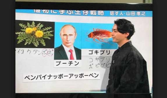 生存 学ぶ 戦略 に 植物 植物に学ぶ生存戦略 話す人・山田孝之